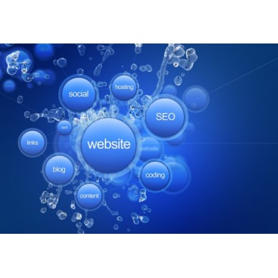 Websites and Portals